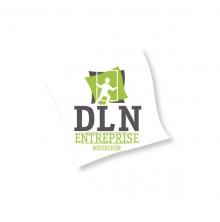 Logo-DLN